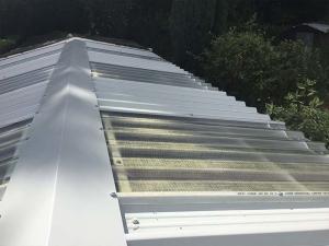 Transparent-Garage-Roof
