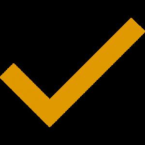 Orange Tick Icon