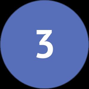 Number Three Icon