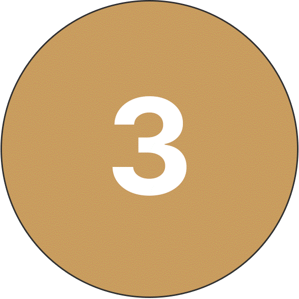 Danmarque Number Three Icon