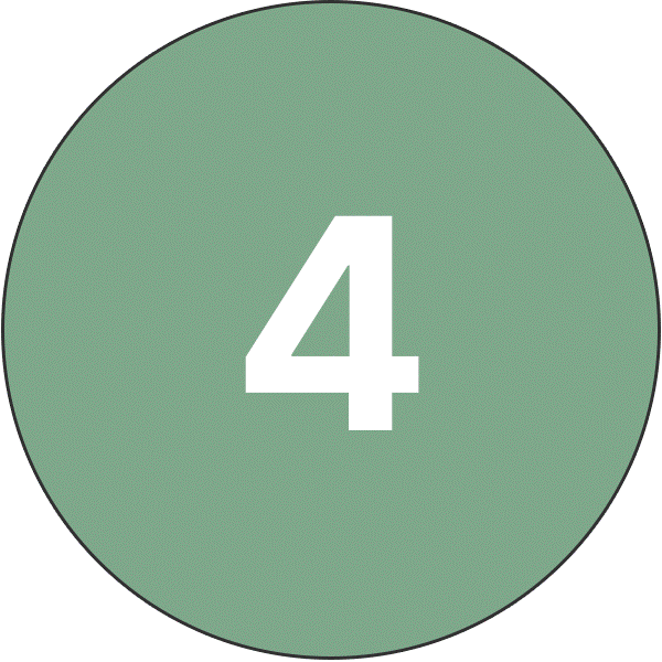 Danmarque Number Four Icon